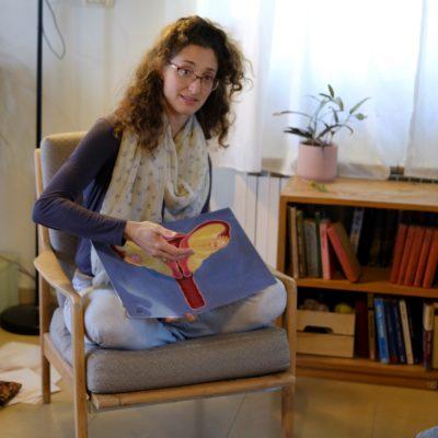 איור 'מערכת הרבייה הנשית' הדפס להדרכה
