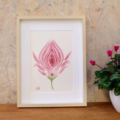 איור 'הפרח הנשי' העתק למסגור